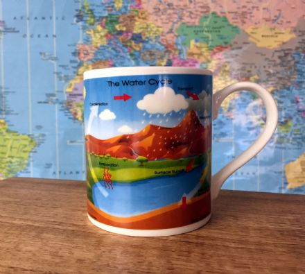 The Water Cycle - Educational Mug ~ Teacher Gift